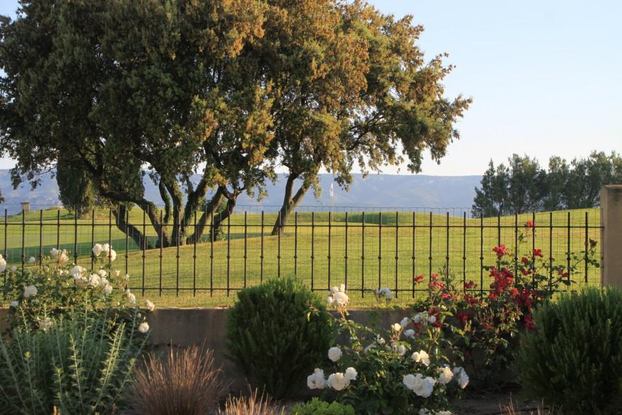 Le golf et le Luberon